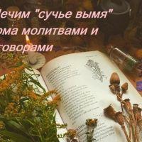 Заговоры и молитвы от сучьего вымени